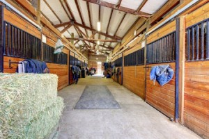 Equine Security Systems in Maryland